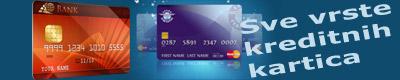 Kupovina kreditnim karticama